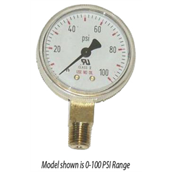 Gauge Lower Mount Brass - 4000PSI - 2-1/2