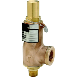 Cryogenic Safety Valve